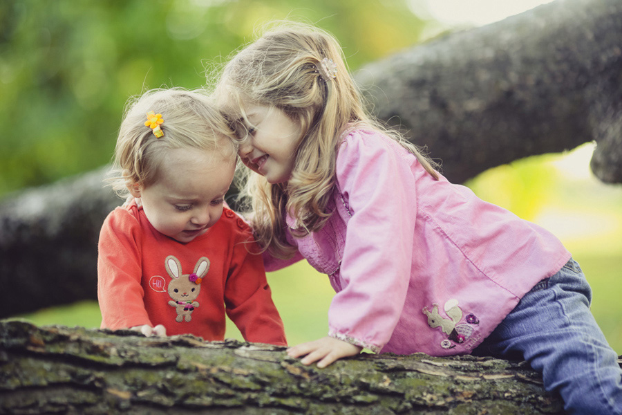 Two Children play on a tree